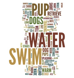 Teach your pup to swim for fun and exercise text vector