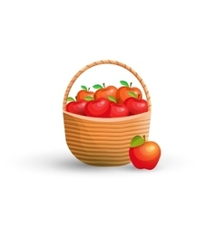 Basket with red apples vector