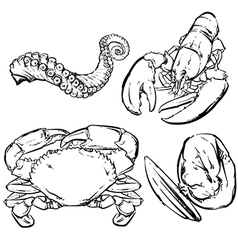 Drawing seafood dinner vector