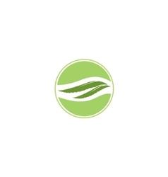 Aloe Vera label vector image vector image