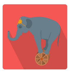 Circus elephant on the wheel icon flat style with vector