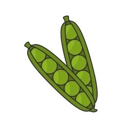 pea pod vegetable vector image