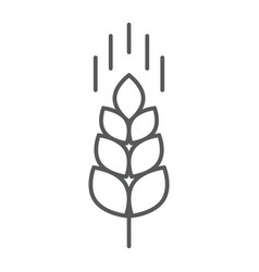 wheat ear thin line icon farming and agriculture vector image