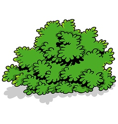 Green Cartoon Shrub vector image