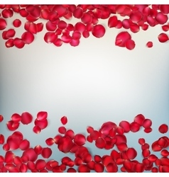 Red rose petals EPS 10 vector image