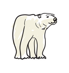 White bear hand drawn isolated icon vector
