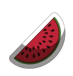 Delicious watermelon fruit isolated icon vector image