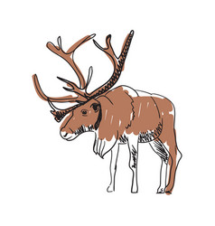 reindeer hand drawn isolated icon vector image vector image