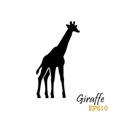Silhouette of a giraffe vector