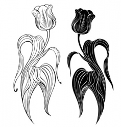 Silhouette of two tulips vector