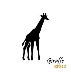 Silhouette of a giraffe vector image