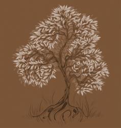 brown tree vector image