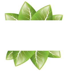 Frame of green leaves on a white background vector