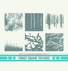 Forest square textures vector