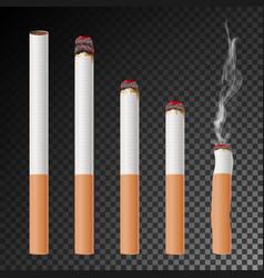Cigarette set realistic cigarette butt vector