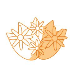 flowers bouquet decoration vector image