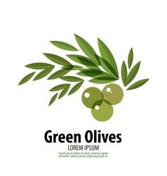 Green Olives logo design template harvest or food vector image vector image
