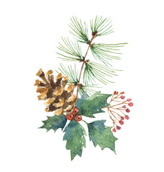 Watercolor christmas bouquet with pine cone vector