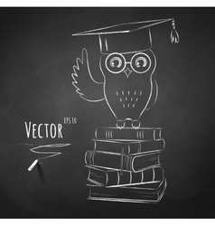 Owl sitting on books vector