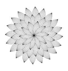Graphic Mandala with abstract petals Zentangle vector image vector image