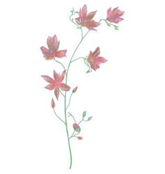 Drawn watercolor flower vector