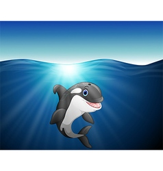killer whale cartoon on the sea vector image