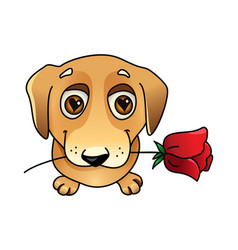 Cute dog in love with rose vector