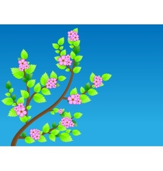 Cherry blossom against blue sky vector