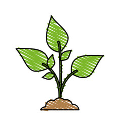 Color crayon stripe cartoon plant with leaves in vector