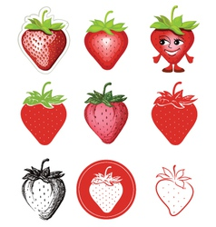 icon of strawberries vector image vector image