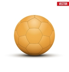 Handball ball orange vector
