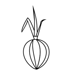 Onion icon outline style vector