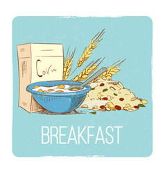 healthy breakfast concept - hand drawn porrige vector image