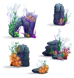 Images of sea stones with algae vector image
