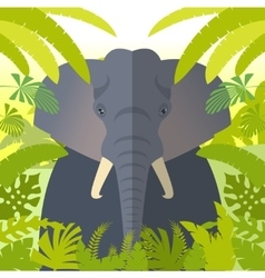Elephant on the jungle background vector