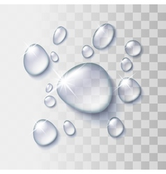 Transparent water drop vector