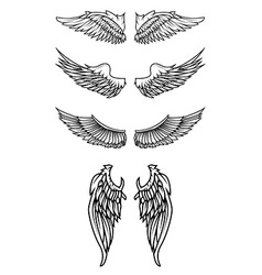 Set of the wings in vector image vector image
