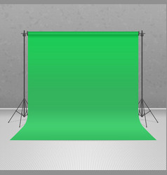 Empty green photo studio vector