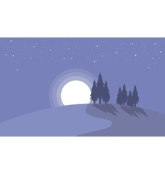 Landscape of spruce with moon christmas vector