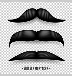 Mustache isolated on white black vintage vector