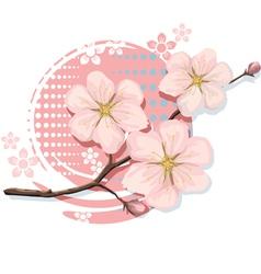 Blossom sakura cherry vector