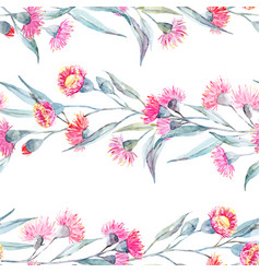 watercolor eucalyptus pattern vector image