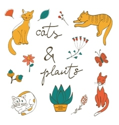 Cats plants flowers and twigs vector