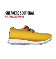Technical of a shoes sectional vector