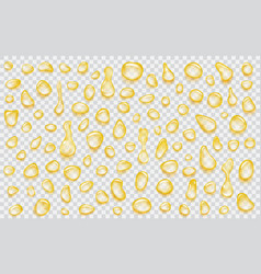 Transparent yellow drops vector