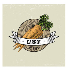 Carrot vintage set of labels emblems or logo for vector