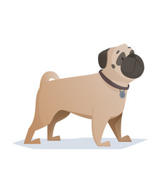 cartoon pug is a simple vector image