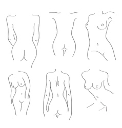 Silhouettes of naked girls on a white background vector