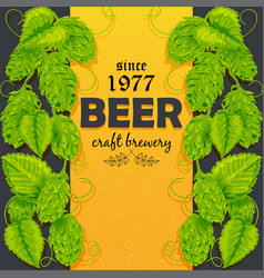 beer poster with a plant hops vector image vector image