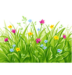 Grass with wild flowers vector